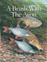 A Brush with the Avon By John Searl